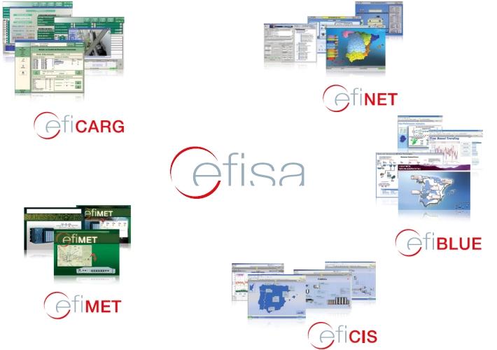 Les principaux secteurs d'activité de CEFISA sont les suivants :Ciment, Télécommunications, Transport ferroviaire, Environnement, Génération d'énergie.